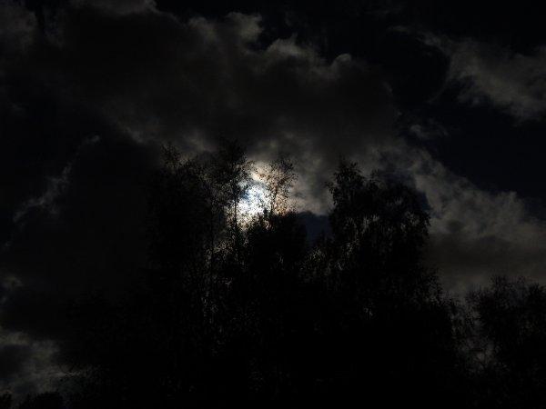 Ночь. ISO400