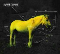 Edward Perraud - Synaesthetic trip.jpg