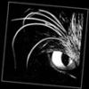 """Беспрводные """"ушки"""" - последнее сообщение от yates"""