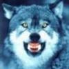 Фотография Тамбовский волк